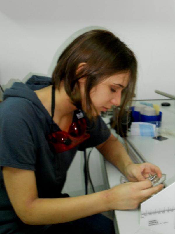 isp2011 (2)